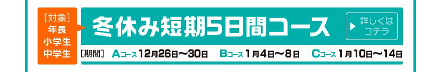 banner_fuyuyasumitanki